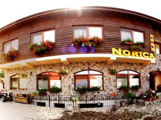 Pension Norica - Gura Raului vacation rentals