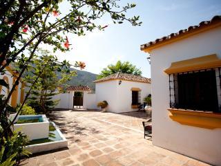 A beautiful andalusian villa on Costa Del Sol - La Cala de Mijas vacation rentals