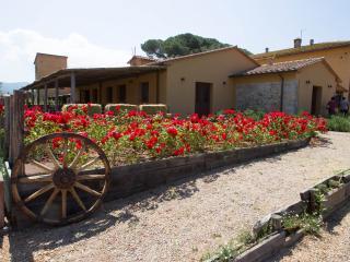CASONE UGOLINO - Castagneto Carducci vacation rentals