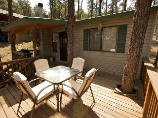 JD's Treehouse is a great two bedroom home with a hot tub and AC. - Ruidoso vacation rentals