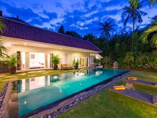 Villa Asana -  Private Vacation Villas in Canggu - Canggu vacation rentals