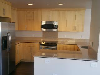 Modern Condo In San Jose - San Jose vacation rentals
