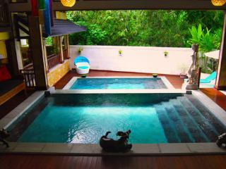 Villa Lola, 3 BR Family retreat - Sanur vacation rentals