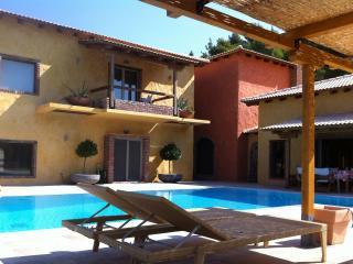 Villa Daphne in Damia, Evia - Limni vacation rentals