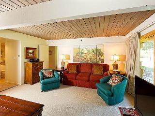 Unit #803 - Snowmass Village vacation rentals