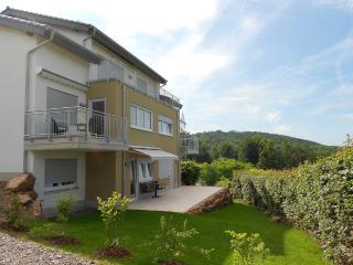 Ferienwohnung auf Weingut - Heidelberg vacation rentals
