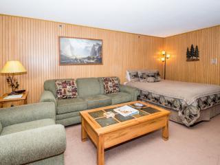 Remodeled Studio Condo Inside the Park! - Yosemite National Park vacation rentals