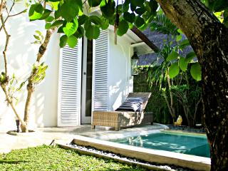 Stylish Villa with private pool Seminyak, Bali - Seminyak vacation rentals
