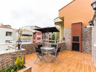 WELL DECORATED A FAMİLY APART - Istanbul vacation rentals