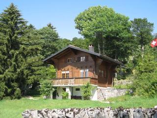 Waadtländer Jura Schweiz - Yverdon vacation rentals