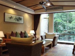 Guangzhou City Luxury Two Bedroom Residence - Guangzhou vacation rentals