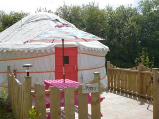 Poppy Yurt - Goonhavern vacation rentals