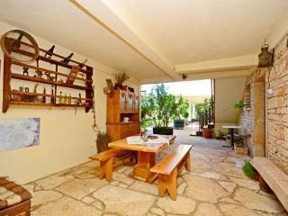 Apartment Srblin - 70221-A1 - Sveti Petar u Sumi vacation rentals