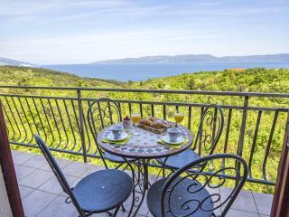 Apartments Klaudio - 75751-A1 - Labin vacation rentals