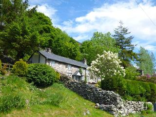 HAULFRYN, pet-friendly cottage with en-suite, woodburners, mountain views, Llangynog, Ref 918906 - Llanrhaeadr ym Mochnant vacation rentals