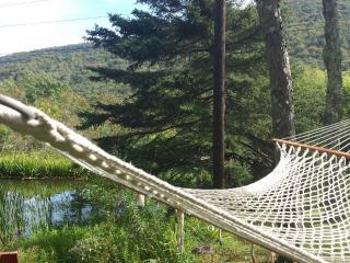 Belleayre Cozy Cabin - Fleischmanns vacation rentals