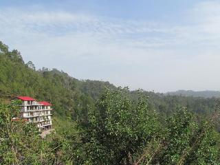 Whispering Pines Home Stay,Dharampur,Teh Kasauli - Kasauli vacation rentals