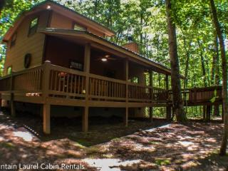 MOUNTAIN HAVEN- WOODED CABIN SLEEPS 6, SITS ON 2.8 ACRES, SEASONAL MOUNTAIN VIEWS, INDIAN BENT TRESS ON PROPERTY, KING BED IN MASTER SUIT, HIGH SPEED INTERNET, HOT TUB, CHARCOAL GRILL, WOOD BURNING FIREPLACE, AND A FIRE PIT! ONLY $99 A NIGHT! - Blue Ridge vacation rentals