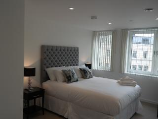 Immaculate Two Bedroom Apartment old street - London vacation rentals