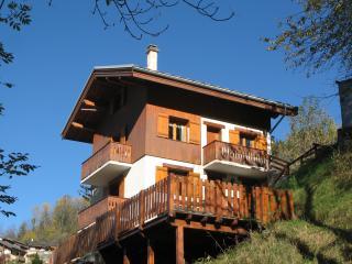 CASCADES 1 duplex 80m² 0 PEISEY VALLANDRY LES ARCS - Peisey-Vallandry vacation rentals