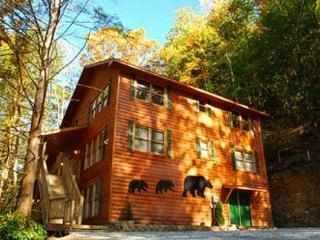 Bear Britches Lodge - Wears Valley vacation rentals