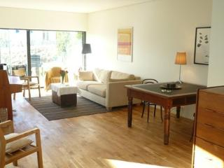 In the heart of Reykjavik, free parking and wifi - Reykjavik vacation rentals
