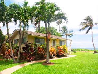 Palm Cottage - Paia vacation rentals