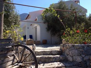 Olive Garden Chalet 3 - Lapta vacation rentals