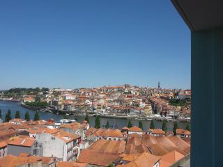 Breath Taking Views to Porto + Free Parking - Porto vacation rentals