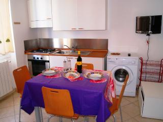 LOFT 100M FROM THE BEACH - Imperia vacation rentals