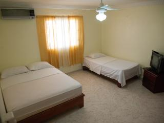 Bright One-Bedroom Apartment - Santo Domingo vacation rentals