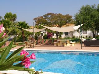 Luxury 11 bedroom Cortijo with large private pool - Seville vacation rentals