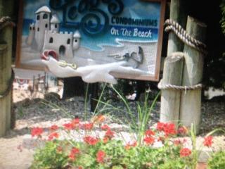 Pineapple Paradise - Osage Beach vacation rentals