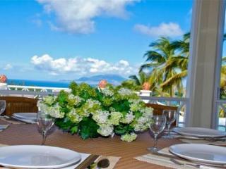 Villa Esterel - Nevis vacation rentals