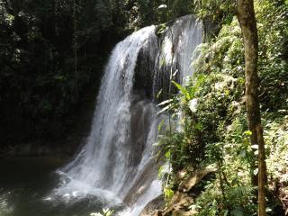 The Buddha Garden - Cabo Rojo vacation rentals