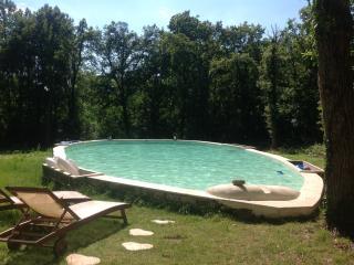 Lodge dans les bois piscine privative et tennis - Illiers-Combray vacation rentals