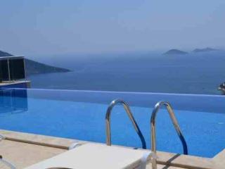 Villa Dolphina - Ibiza Town vacation rentals