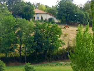 Naturix, Domaine de Maillelevant - Castelnau-Picampeau vacation rentals