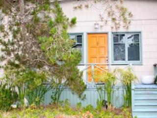 Spacious, classic Stinson Beach home, steps to the beach - Stinson Beach vacation rentals