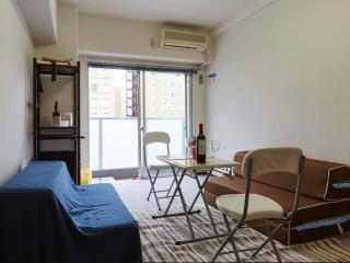 ✈ Center Tokyo, near Ginza, Directly Airports ♨ - Minato vacation rentals