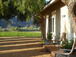 16 acre ranch with vineyard - Santa Ynez vacation rentals