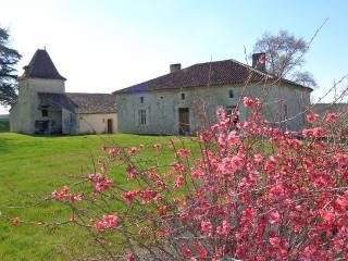 métairie German - Pouy-Roquelaure vacation rentals