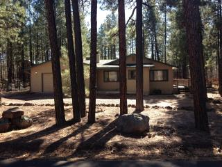 Awesome cabin getaway! - Pinetop vacation rentals