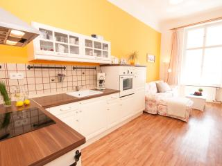 3-Bedroom 80m2 City Center Apartment - Prague vacation rentals