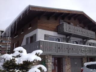 Secret De Neige ***** - L'Alpe-d'Huez vacation rentals