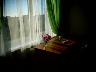 Cosy apartment quiet area not far from the center - Saint Petersburg vacation rentals