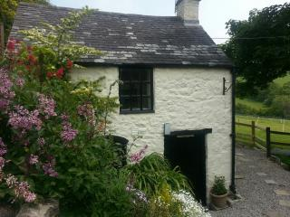 NEW! The Bothy, super cute 2-level stone studio - Tremeirchion vacation rentals
