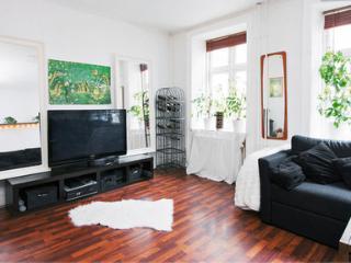 Luxurios and Cosy Apartment in the Heart of Copenhagen - Copenhagen vacation rentals