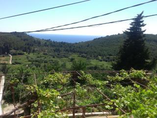 Holiday house Marin - Mljet vacation rentals