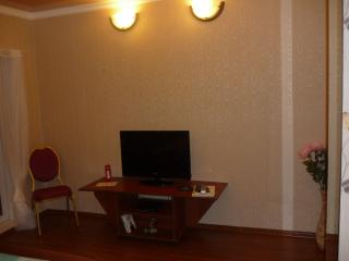 Studio apartment - Magnitogorsk vacation rentals